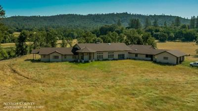 Nevada County Single Family Home For Sale: 11590 Lazy Valley Road
