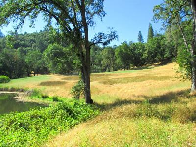 Nevada County Residential Lots & Land For Sale: Dog Bar Road