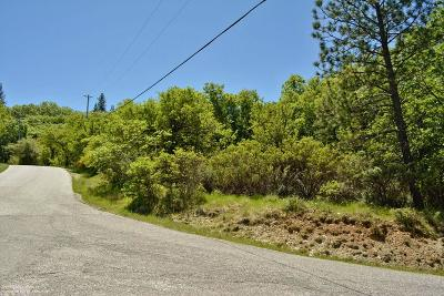 Residential Lots & Land For Sale: 12317 Slate Creek Creek (N)