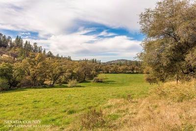 Butte County, Nevada County, Placer County, Sacramento County, Sierra County, Sutter County, Yuba County Single Family Home For Sale: 12499 Elster Place