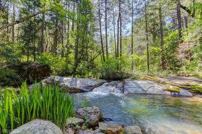 Butte County, Nevada County, Placer County, Sacramento County, Sierra County, Sutter County, Yuba County Single Family Home For Sale: 18834 Rock Creek Road