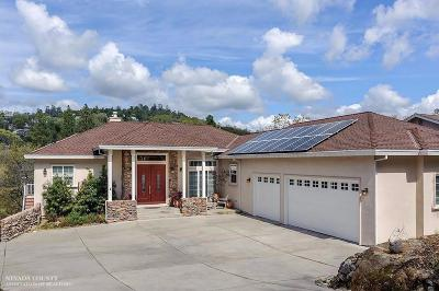 Penn Valley Single Family Home For Sale: 17582 Chaparral Drive