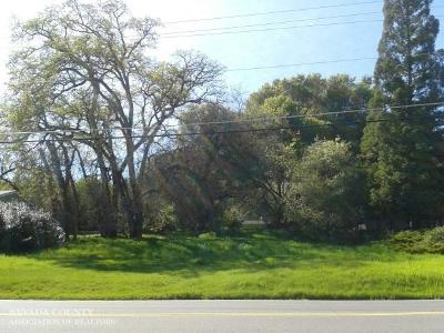 Residential Lots & Land For Sale: 19246 Wildflower Drive