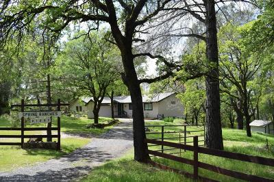 Grass Valley Single Family Home For Sale: 21237 Spring Ranches Road