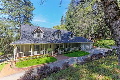 Nevada County Single Family Home For Sale: 13920 Greenhorn Road
