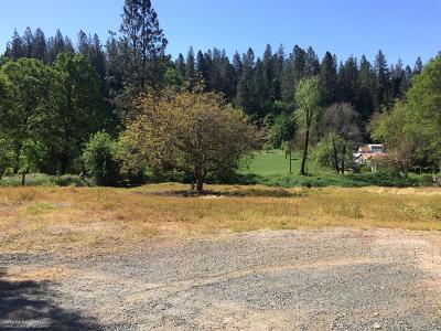 Grass Valley Residential Lots & Land For Sale: 450 Bennett Street