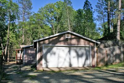 Nevada City Single Family Home For Sale: 12905 Shady Creek Drive