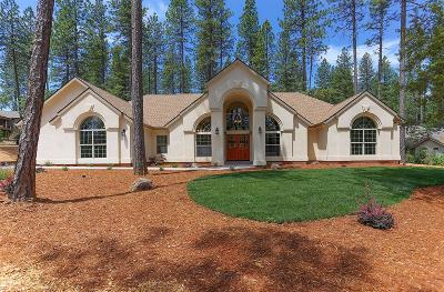 Nevada City Single Family Home For Sale: 10470 Indian Trails