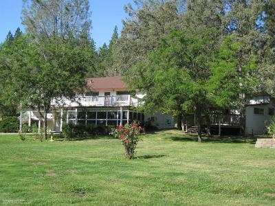 Penn Valley Single Family Home For Sale: 10374 Bar Hill Road