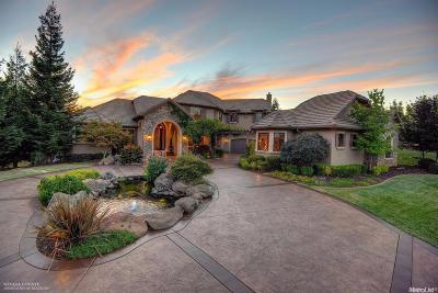 Single Family Home For Sale: 23818 Darkhorse Drive