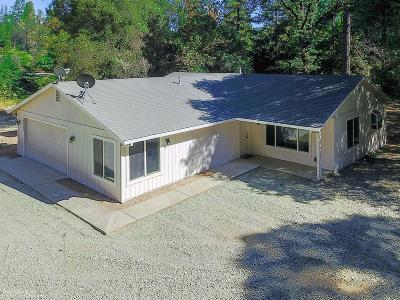 Nevada City Single Family Home For Sale: 12425 Shady Creek Drive
