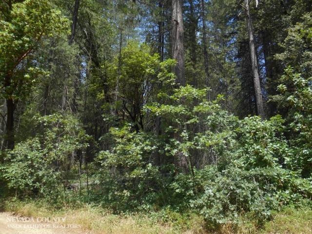 Listing 18901 North Canyon Road Nevada City CA MLS 20171689