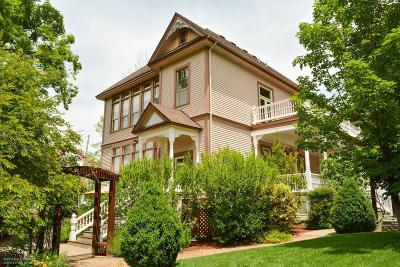 Grass Valley Single Family Home For Sale: 135 Winchester Street
