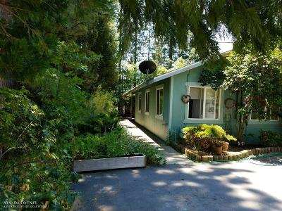 Grass Valley Single Family Home For Sale: 160 Glenbrook Drive