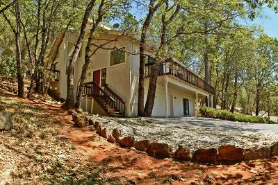 Nevada County Single Family Home For Sale: 16795 Alice Way