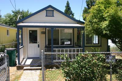 Grass Valley Single Family Home For Sale: 110 Kendall Street