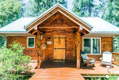 Nevada County, Placer County Single Family Home For Sale: 21049 New Rome Road