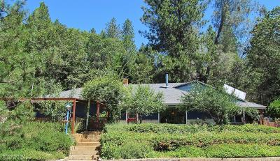 Nevada City Single Family Home For Sale: 15770 Ridge Estates Road