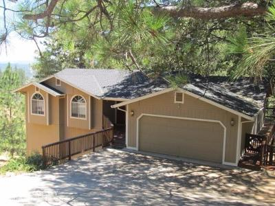 Nevada County Single Family Home For Sale: 17355 Alexandra Way