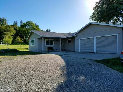 Penn Valley Single Family Home For Sale: 17145 Apache Court