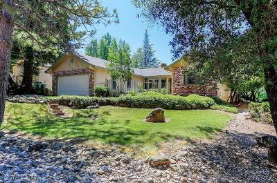 Nevada County Single Family Home For Sale: 19179 Jayhawk Drive