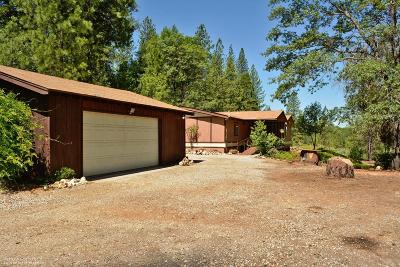 Nevada City Single Family Home For Sale: 12600 Kilham Mine Road