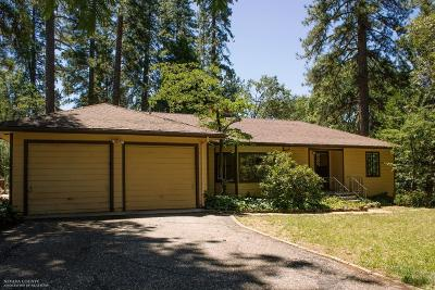 Nevada City Single Family Home For Sale: 11213 Ridge Road