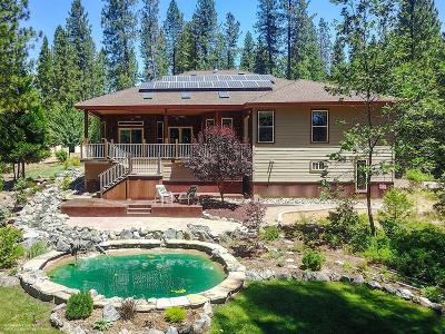Nevada City CA Single Family Home For Sale: $899,000