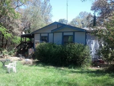 Single Family Home For Sale: 23722 Fagerlie Road