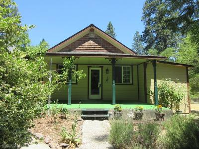 Nevada City Single Family Home For Sale: 706 West Broad Street