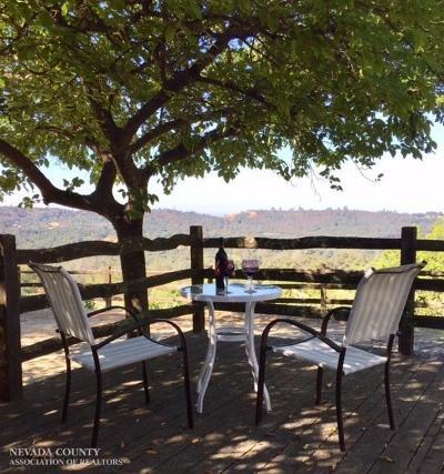 Auburn Single Family Home For Sale: 930 Bonnie Lane