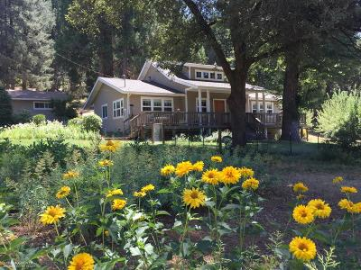 Grass Valley Single Family Home For Sale: 15956 Colfax Highway