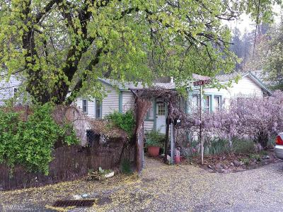 Grass Valley Multi Family Home For Sale: 101 Kendall Street