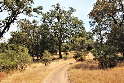 Residential Lots & Land For Sale: 15108 Chisum Trail