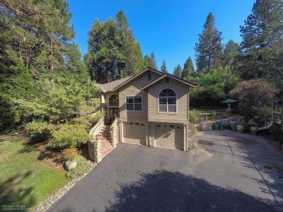 Nevada City Single Family Home For Sale: 14627 Echo Ridge Drive