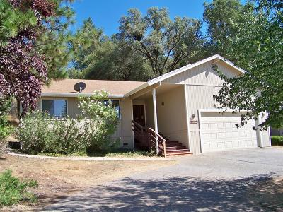 Penn Valley Single Family Home For Sale: 18057 Lake Forest Drive