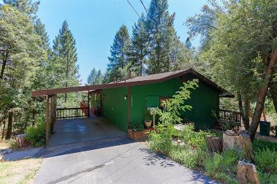 Nevada City Single Family Home For Sale: 15973 Mountain View Drive