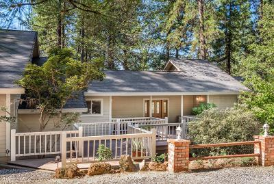 Grass Valley Single Family Home For Sale: 11021 Norager Way