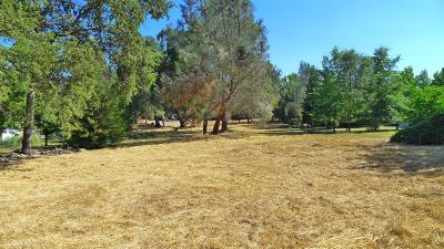 Residential Lots & Land For Sale: 19200 Wildflower Drive