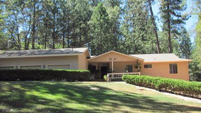 Nevada County Single Family Home For Sale: 11636 Alta Sierra Drive