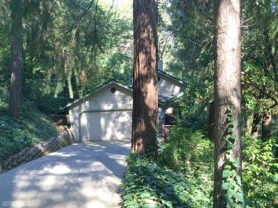 Grass Valley Single Family Home For Sale: 10901 Footwall Drive