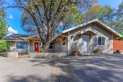 Nevada County Single Family Home For Sale: 15695 Fay Road