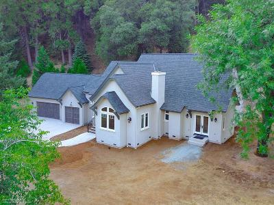 Nevada City Single Family Home For Sale: 11323 North Bloomfield Road