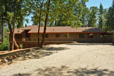 Nevada City Single Family Home For Sale: 18355 Lazy Dog Road