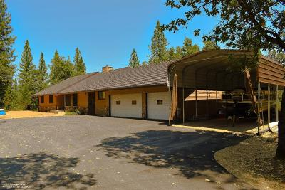 Grass Valley Single Family Home For Sale: 15860 You Bet Road