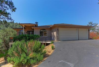 Nevada County Single Family Home For Sale: 17109 Geneva Court