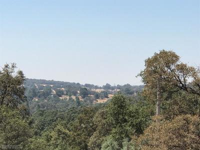 Nevada County Single Family Home For Sale: 11723 Creek View Drive