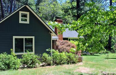 Grass Valley Single Family Home For Sale: 10621 Oak Street