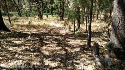 Grass Valley CA Residential Lots & Land For Sale: $50,000
