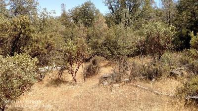 Grass Valley CA Residential Lots & Land For Sale: $97,000